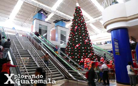 CentraNorte-foto-23--20-12-2013